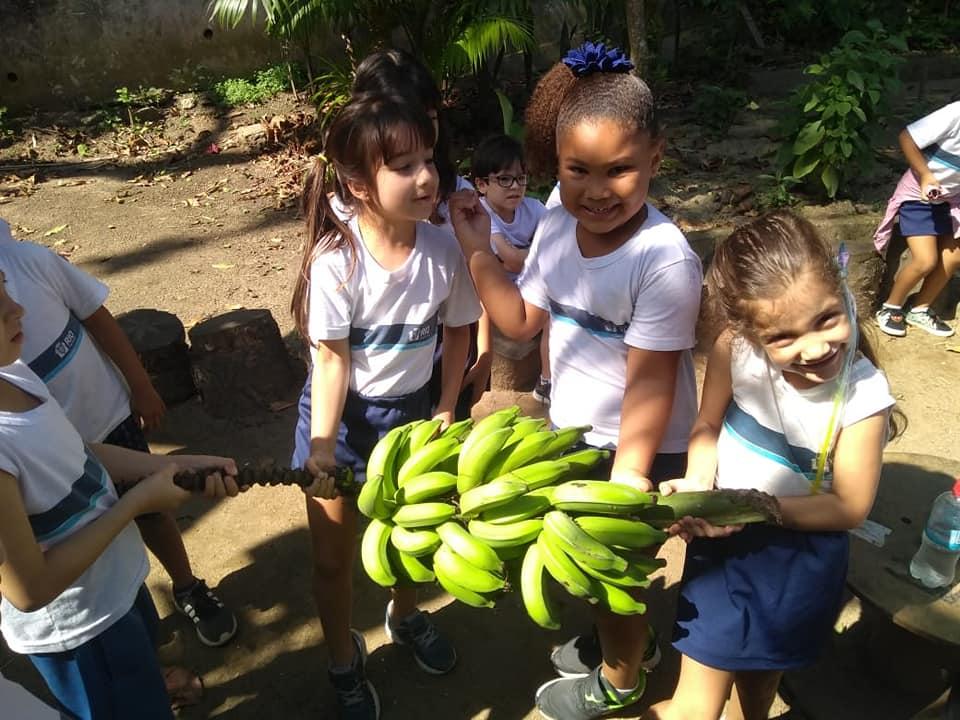 79644036 2130521457051619 4035699473463115776 n - Nas escolas, as feiras de trocas, campanhas solidárias e educação ambiental geram bem-estar e economia para as famílias