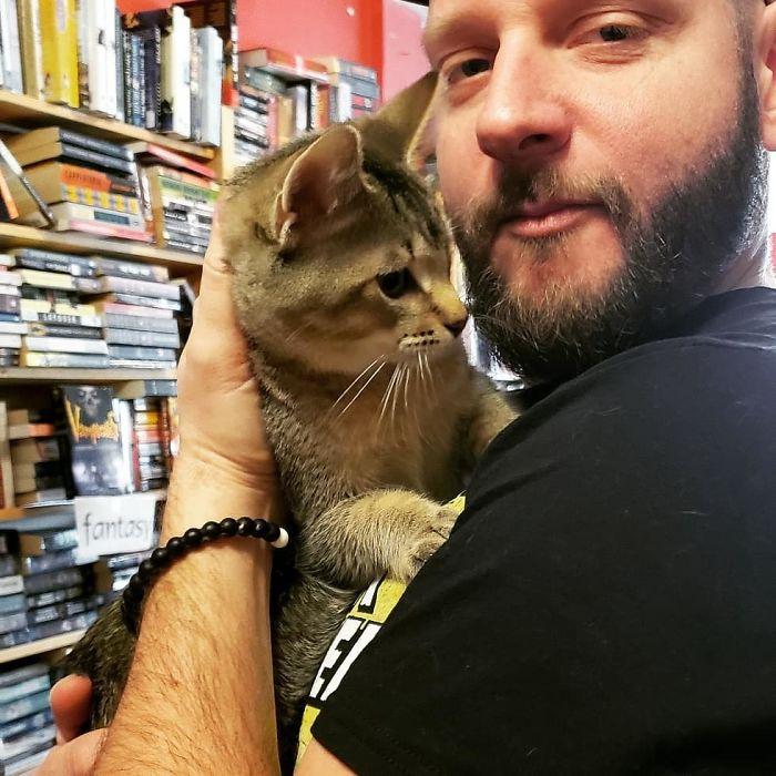 homemcomgato - Os gatos e sua inusitada atração por livros