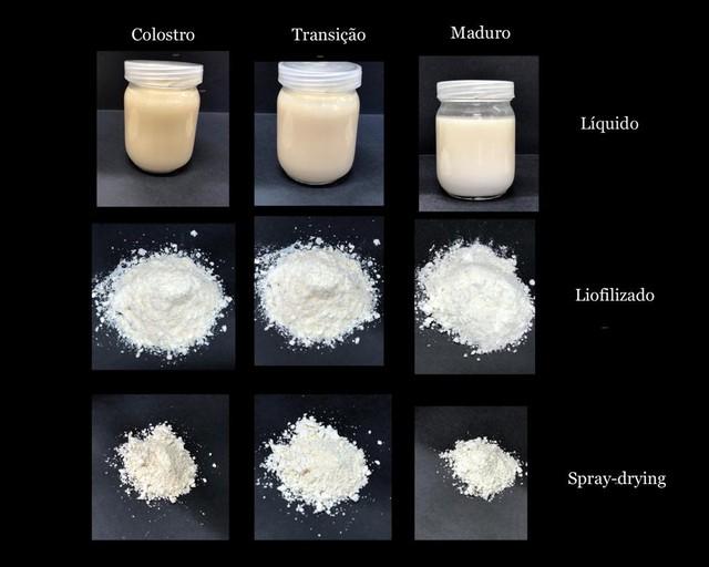 leite materno em po - Transformar leite materno em pó. Uma pesquisa em desenvolvimento que ajudará a saúde dos bebês