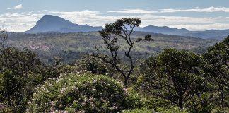 800px Parque Nacional Chapada dos veadeiros 2 324x160 - Início